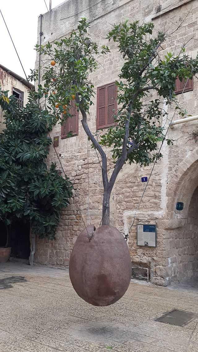 Парящее апельсиновое дерево
